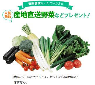 産地直送野菜などプレゼント