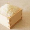 米びつの虫とは無縁!タダでできる虫除け対策があった!簡単手作り